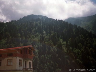 View of Ayder high plateau and spa located in Rize city of Turkey.