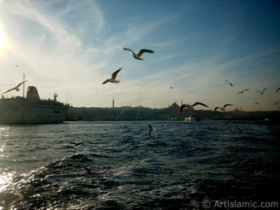 View of Eminonu coast, Beyazit Tower, Suleymaniye Mosque and Fatih Mosque from the Bosphorus in Istanbul city of Turkey. (The picture was taken by Artislamic.com in 2004.)