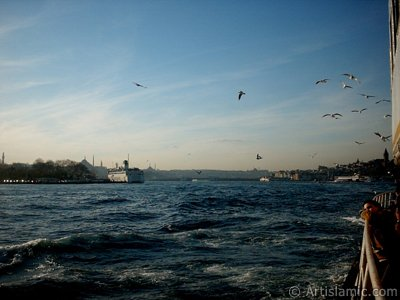 View of Sarayburnu coast, (from left) Beyazit Tower, Suleymaniye Mosque, on the horizon Fatih Mosque, Yavuz Sultan Selim Mosque, on the right Galata Tower, sea gulls accompanying the ship and a child daydreaming while he is watching Istanbul city from the Bosphorus in Turkey.