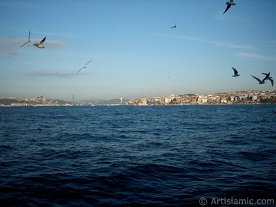View of Bosphorus Bridge, Uskudar coast Kiz Kulesi (Maiden`s Tower) and sea gulls from the Bosphorus in Istanbul city of Turkey. (The picture was taken by Artislamic.com in 2004.)