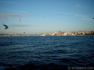 View of Bosphorus Bridge, Uskudar coast Kiz Kulesi (Maiden`s Tower) and sea gulls from the Bosphorus in Istanbul city of Turkey.