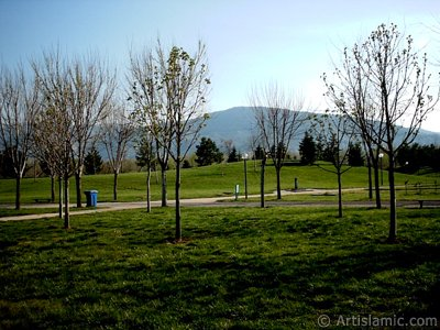 View of Botanical Park in Bursa city of Turkey.