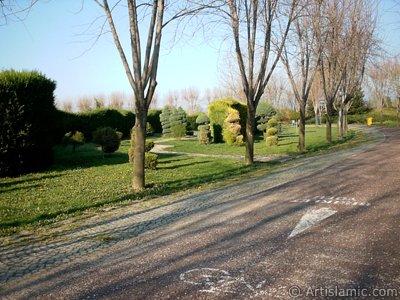 Bursa Botanik Parkından bir manzara. (Resim 2004 yılında islamiSanat.net tarafından çekildi.)