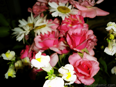 A bouquet consisting of rose, daisy and snapdragon flowers. <br>Photo Date: June 2007, Location: Turkey/Sakarya, By: Artislamic.com