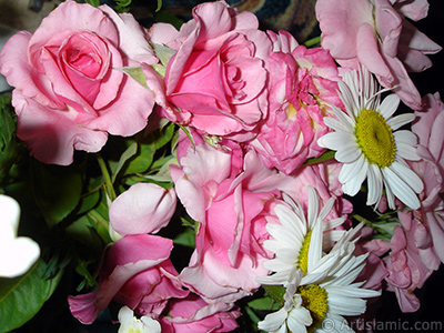 Gül, papatya ve aslanağzı çiçeklerinden oluşan bir çiçek demeti resmi. <br>Çekim Tarihi: Haziran 2007, Yer: Sakarya, Fotoğraf: islamiSanat.net